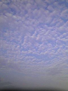 20071011212608.jpg