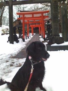 与次郎稲荷神社