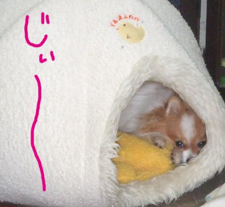 080107_04.jpg