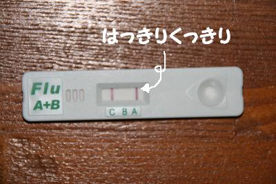 20080218133529.jpg