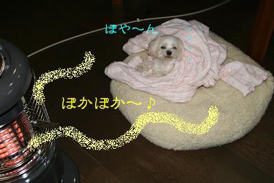 20080220185540.jpg