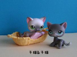 子猫&子猫