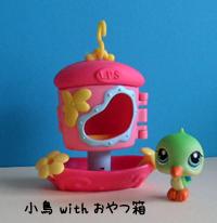 小鳥withおやつ箱