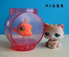 ネコ&金魚