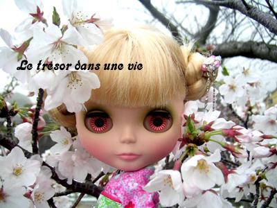 桜さく。ぷっ