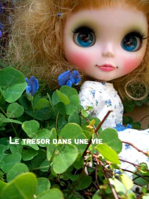 青い目と青い花