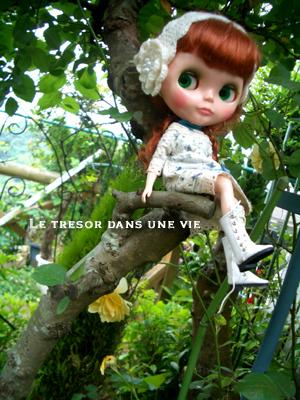 木登り大好きよー。