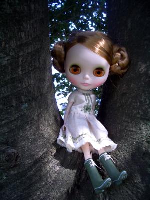 木の上は気持ち良いなー。