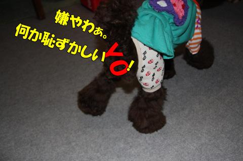 ミトらっちょ♪のスカートに挑戦!10