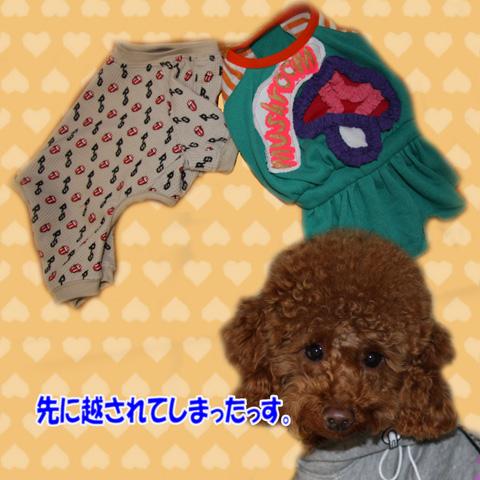 ミトらっちょ♪のスカートに挑戦!14