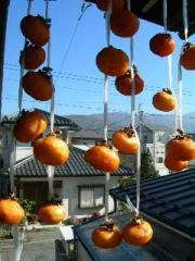Drying persimmons.