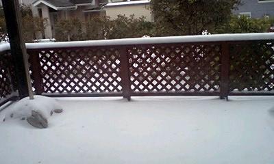 暴風雪その後・・・