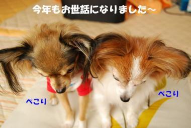 DSC_9128 ブログ