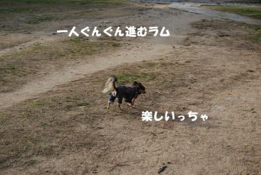 DSC_0869 ブログ