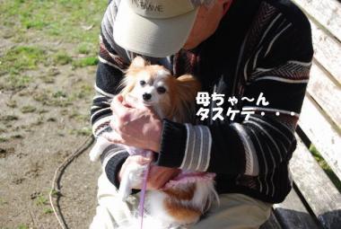 DSC_1078 ブログ
