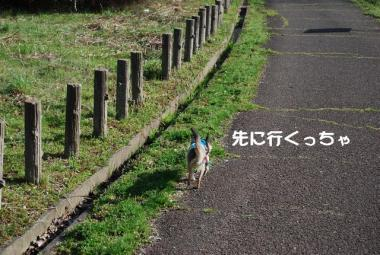 DSC_1562 ブログ