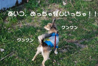 DSC_1609 ブログ