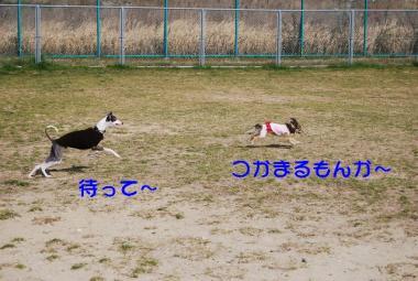 DSC_2414 ブログ