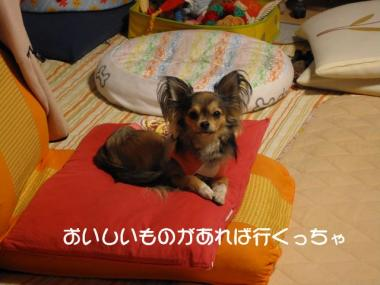IMG_1669 ブログ
