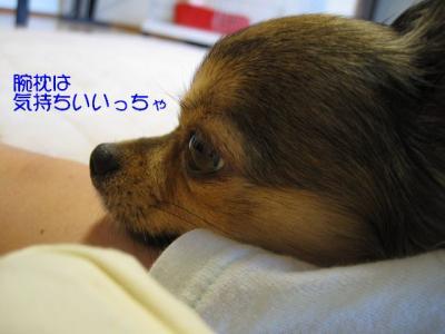 IMG_2187 ブログ