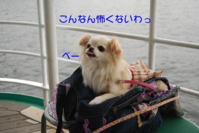 DSC_4247 ブログ