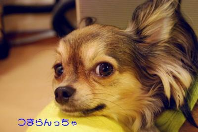 DSC_5592 ブログ