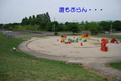 DSC_3822.jpg
