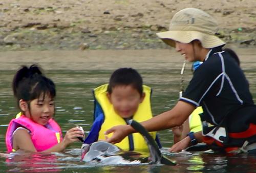 イルカ 餌やり