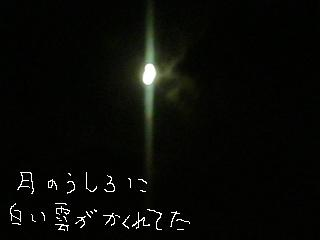 tukikumo-1.jpg