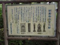 09-aji-3.jpg