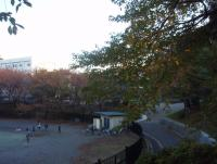 ida-sakuradai-3.jpg