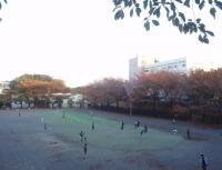 ida-sakuradai-4.jpg