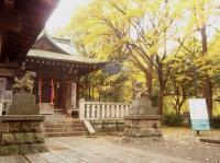 kosugi-2.jpg
