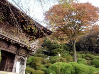 tougaku-2.jpg