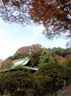 tougaku-5.jpg