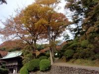 tougaku-6.jpg