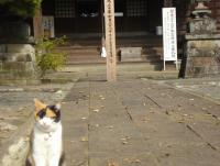 tougaku-8.jpg