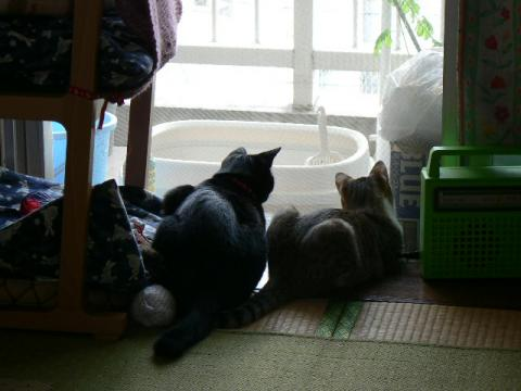 2006年きなみ社長と笹身部長