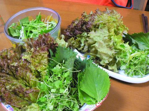 2007年11月10日収穫野菜