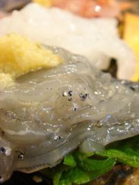 がってん寿司15