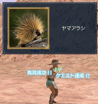 20060312q1a.jpg