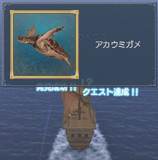 20060317q2a.jpg