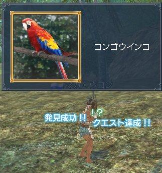 20060403q1a.jpg