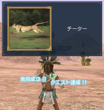 20060409q1a.jpg