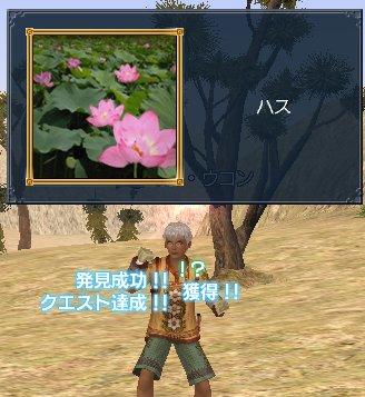 20060409q8a.jpg
