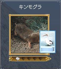 20060414t4.jpg