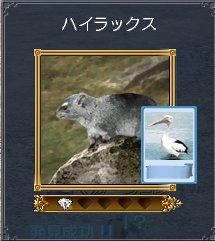 20060414t7.jpg