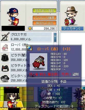 Maple0223a.jpg