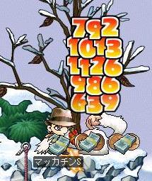 Maple0236a.jpg