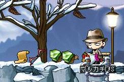 Maple0237a.jpg